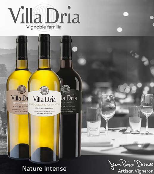 Villa-Dria-cover-photo